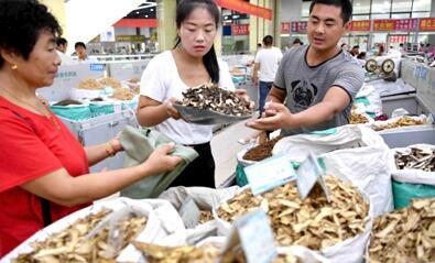 安徽省亳州中药材专业市场
