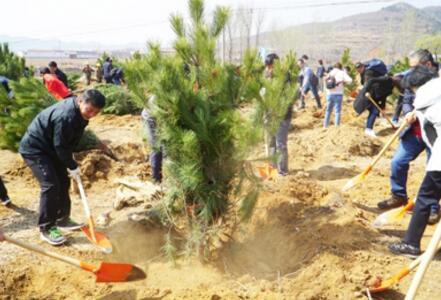 国家中医药管理局组织局机关及直属单位到北京市密云区义务植树基地开展绿化活动